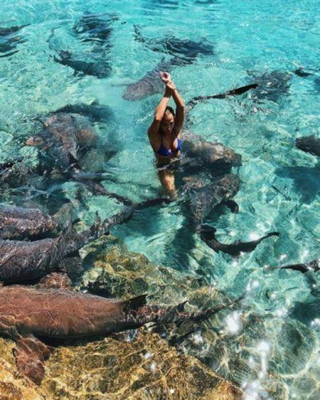 Katarina Zarutskie mergulho tubarões