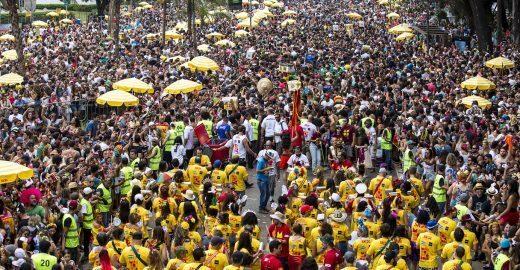 Plantio de árvores quer zerar impactos de blocos de Carnaval
