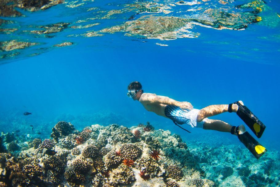 O uso de filtro solar foi proibido para proteger corais de recifes