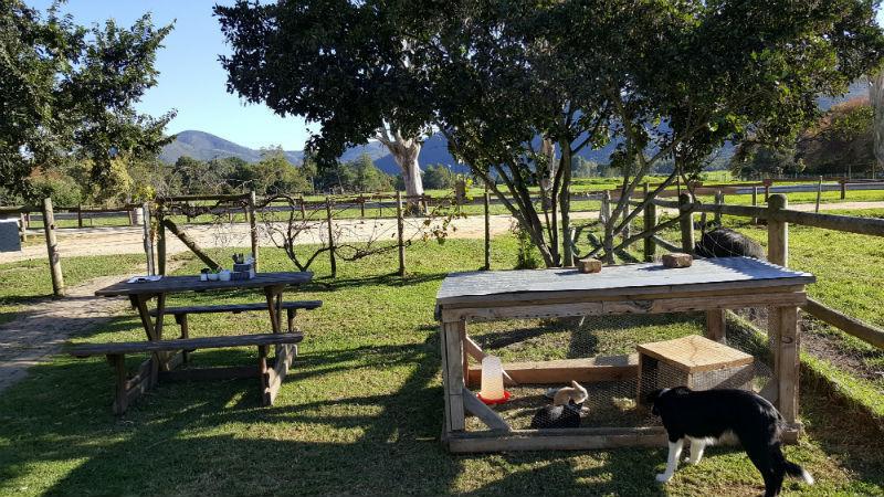 Área externa do restaurante de Nature's Way Farm Stall