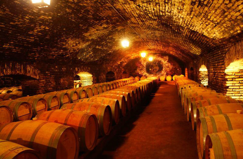 vinícola Concha Y Toro