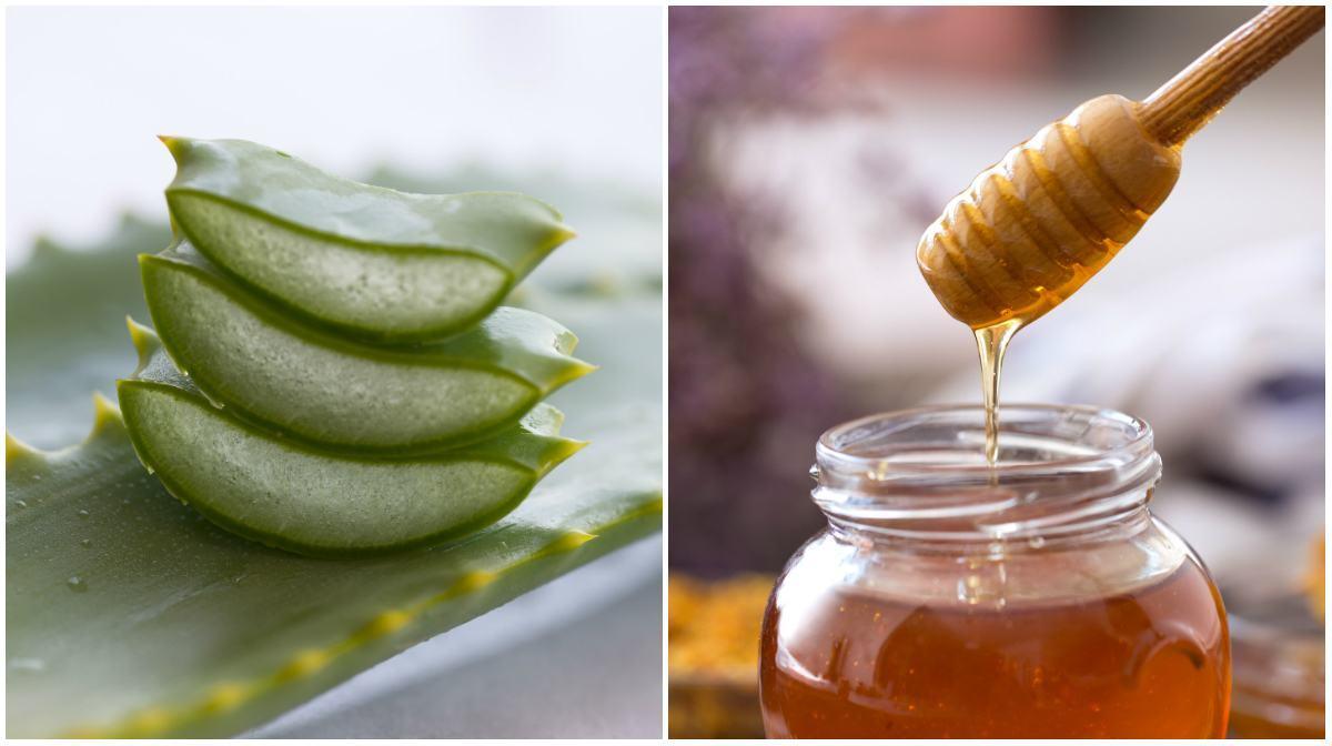 Aloe vera (babosa) e mel