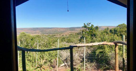 Durma com o rugido de leões neste 'glamping' na África do Sul