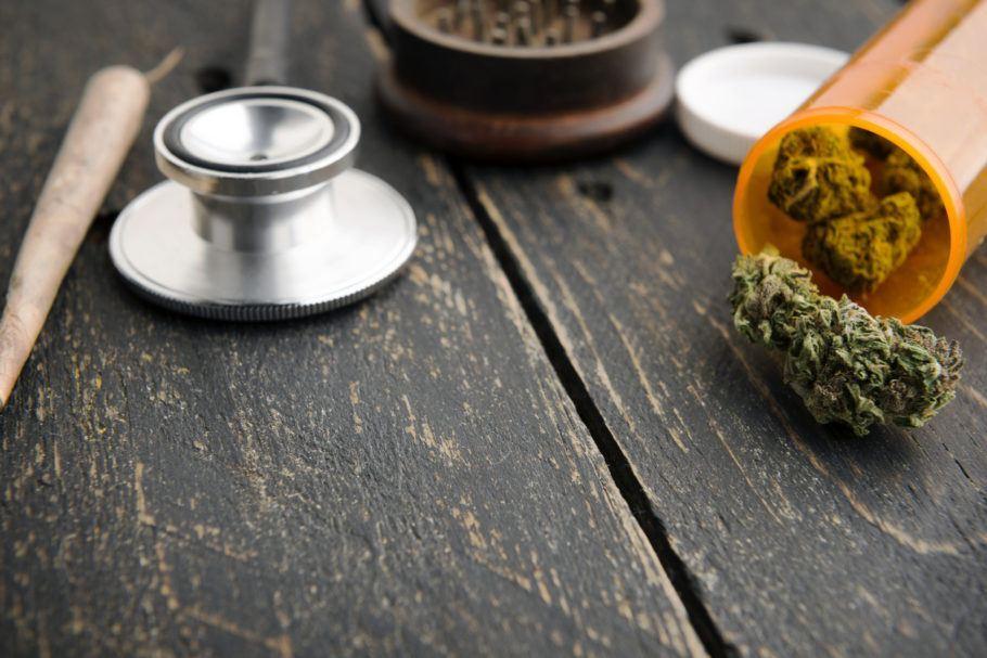 A Dr. Cannabis nasceu com a ambição de ser referência no setor na América Latina
