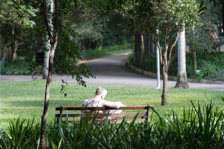 Parque Buenos Aires, piquenique refrescante em SP
