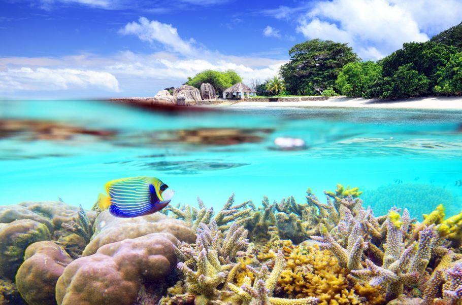 As Ilhas Seychelles foram o destino escolhido pelo casal real William e Kate Middleton para passar a lua de mel