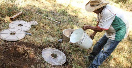 Vaso biodegradável abastece de água e protege mudas em solo árido