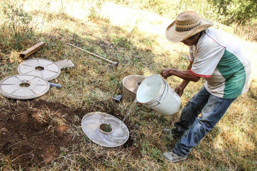 O vaso biodegradável funciona como reservatório de água e proteção contra animais