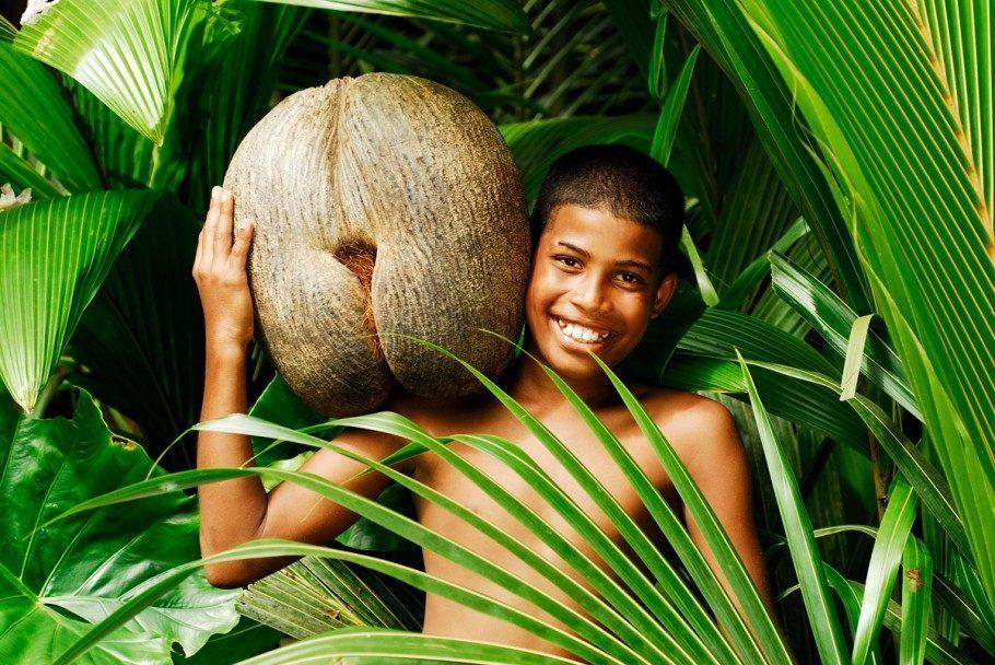 Menino exibe o coco-de-mer, maior semente do mundo e que tem a forma de nádegas