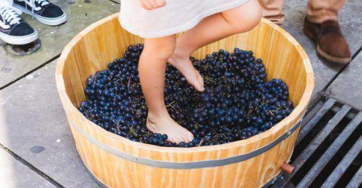 Leitor VilaMundo tem 15% off em compra de degustação de vinho
