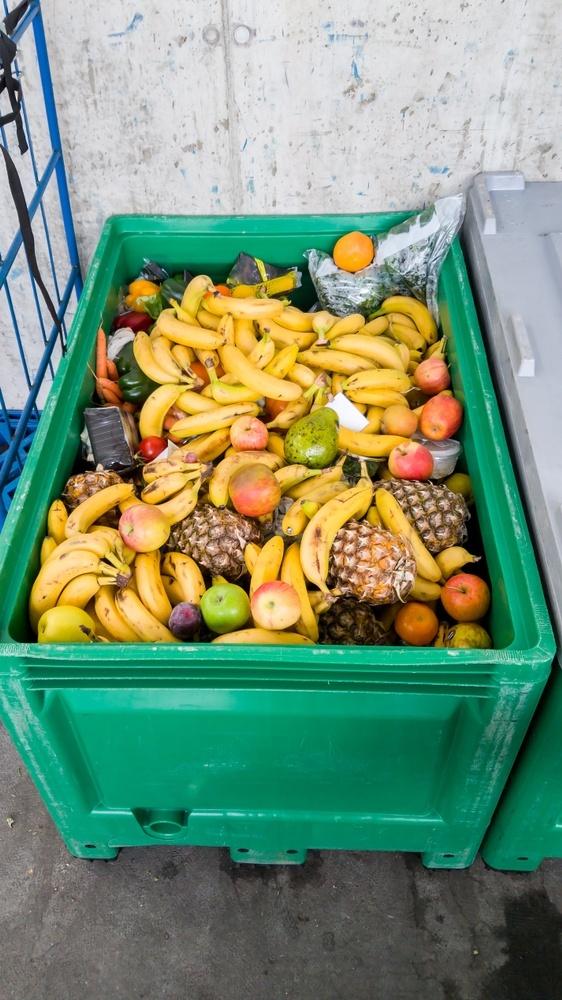 Frutas e verduras são descartadas por estarem feias ou maduras demais