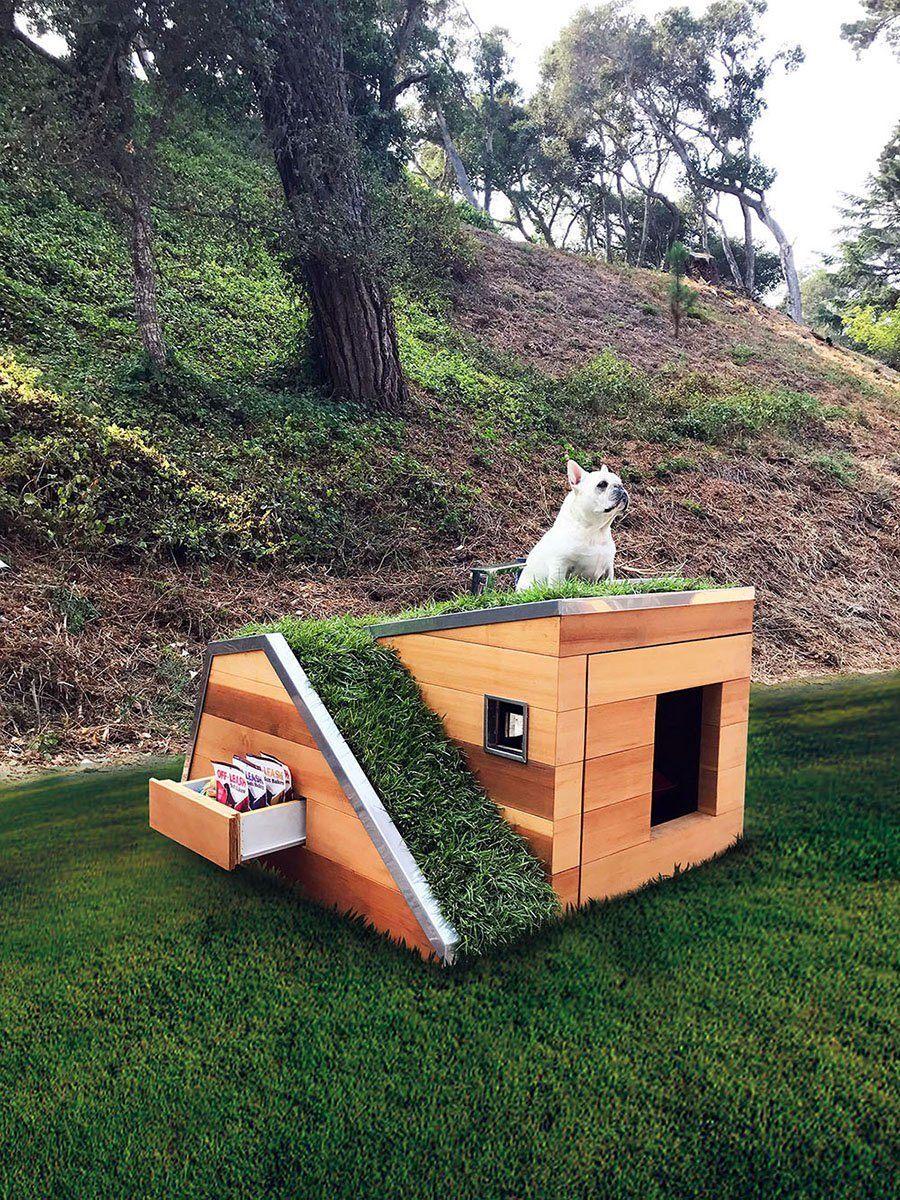 Embora esse cão também seja branco, não se trata do Snoopy em cima da casa de cachorro com telhado verde