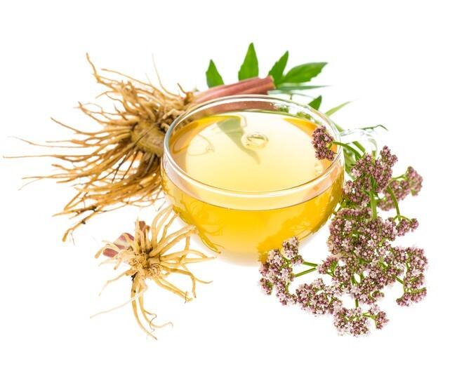 chá com alguma plantas de valeriana ao lado