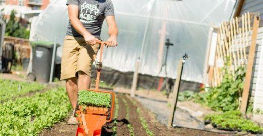 Semeadora para pequenas propriedades planta 37 mudas por minuto