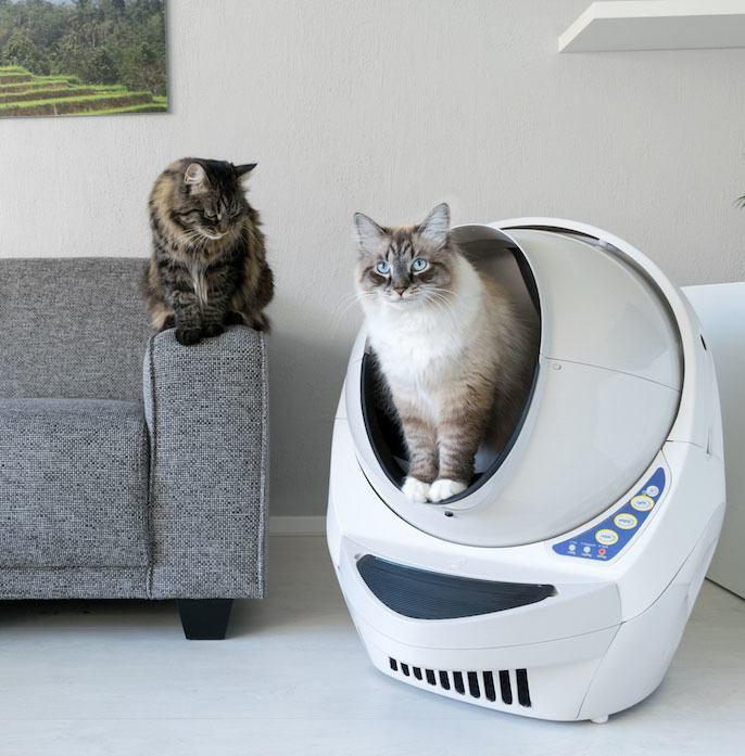 A caixa de areia autolimpante promete praticidade na higienização do banheiro dos gatos