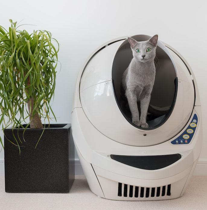 O aparelho possui sensores que detectam a presença do felino