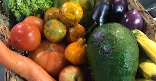 Legumes e frutas fora do padrão são salvos do lixo por movimento