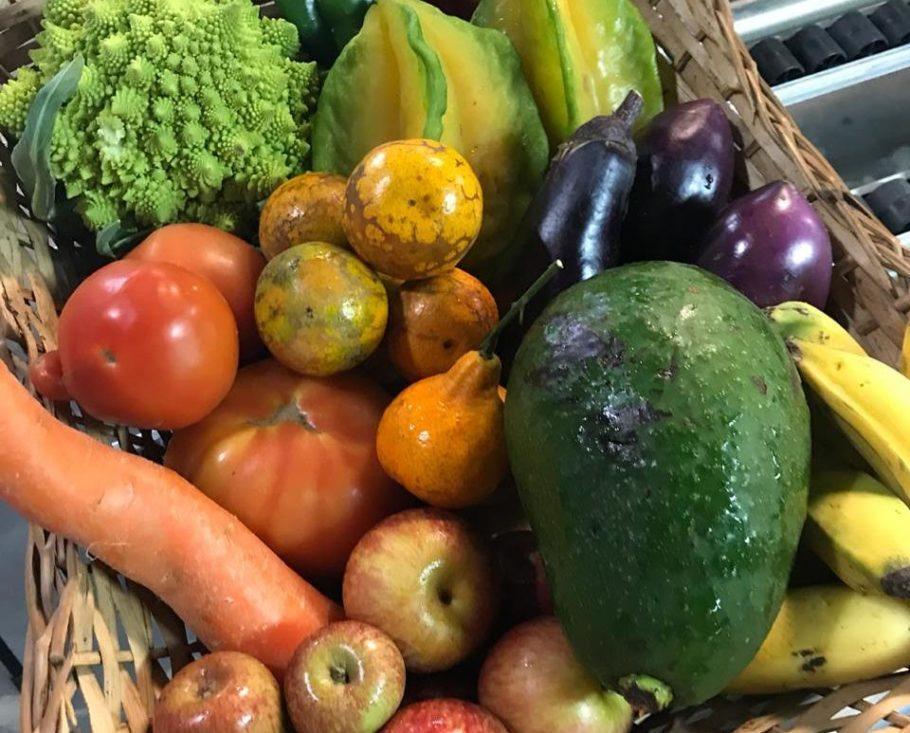 Legumes e frutas fora do padrão visual podem ter o mesmo gosto e o mesmo teor nutritivo dos bonitões