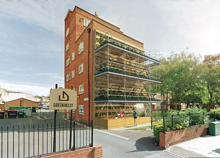 O projeto de horta orgânica vertical ocupa paredes cegas de edifícios e fomenta a economia local