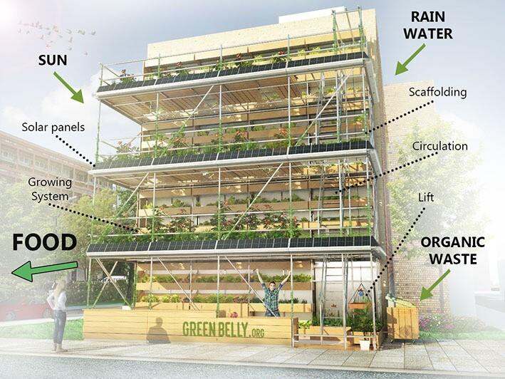 O cultivo da horta orgânica vertical se vale de recursos naturais, como a luz solar e a água da chuva