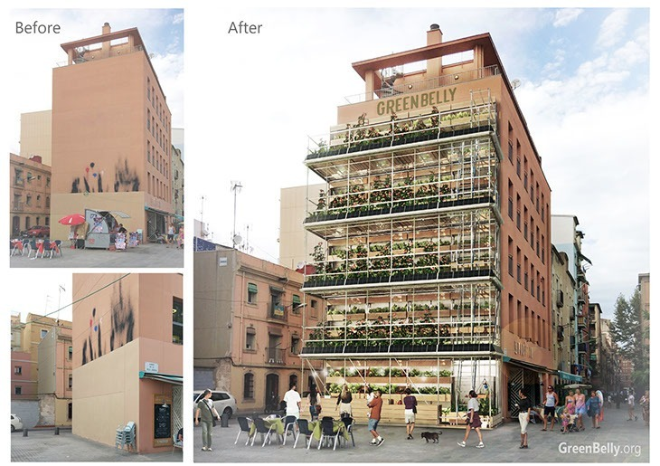 Paredes até então sem uso são ocupadas pelo projeto de horta orgânica vertical