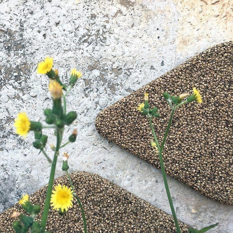 Painéis de tratamento acústico feitos de cascas de sementes de cânhamo