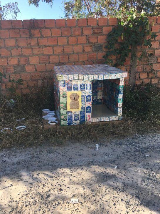 Cada casa de cachorro de caixas de leite é feita de cerca de 150 embalagens