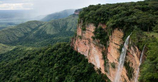 Qualquer pessoa pode ficar de olho no desmatamento no Cerrado