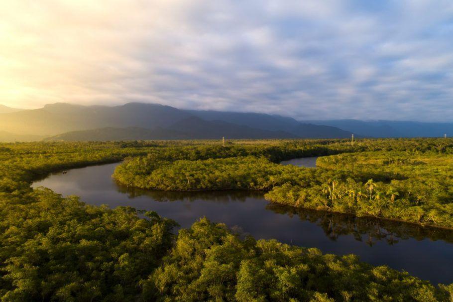 O país não cumpriu a meta de redução das taxas de conversão de ambientes nativos de biomas como a Amazônia