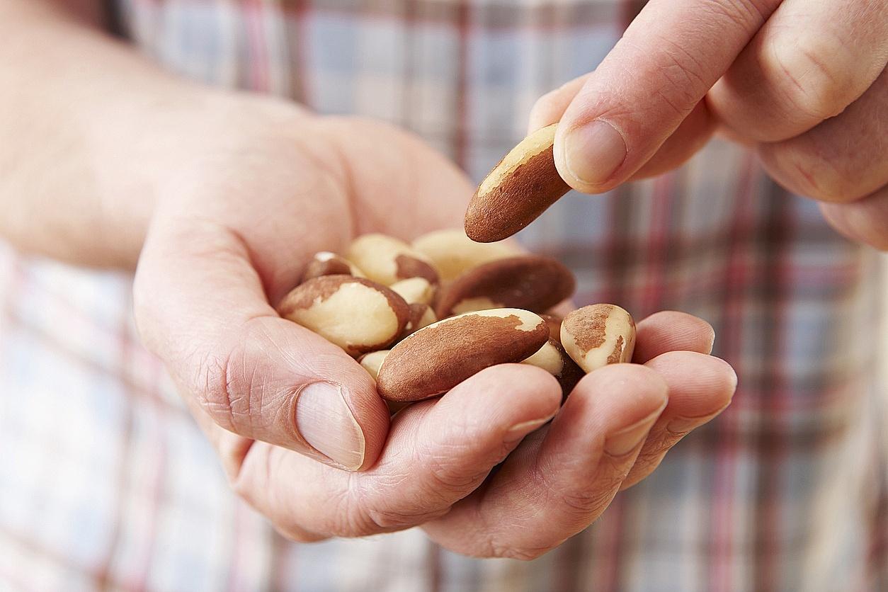um punhado de castanhas na mão de uma pessoa
