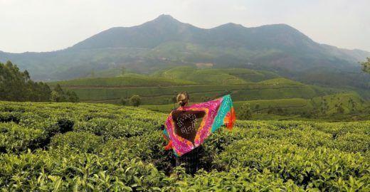 Conheça Kerala, uma Índia ainda pouco conhecida dos brasileiros