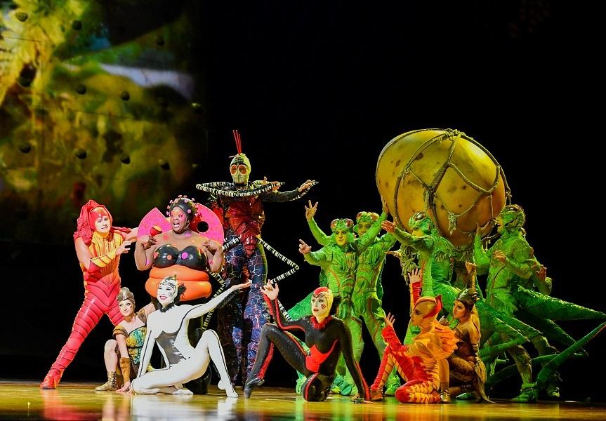 Espetáculo 'OVO', do Cirque du Soleil