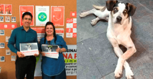 Promotor recebe petição que pede justiça a cão morto no Carrefour