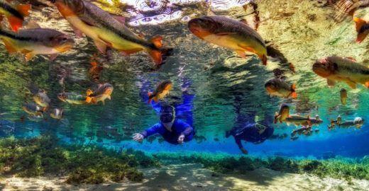 Passeios de ecoturismo em MS concorrem a prêmio internacional