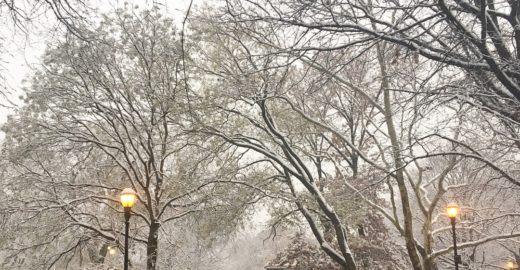 Inverno em Nova York: dicas para aproveitar melhor a cidade
