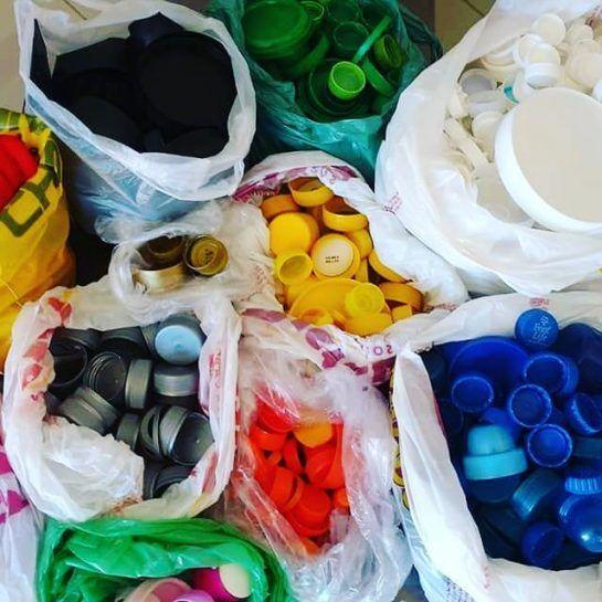 O dinheiro arrecadado com a venda das tampinhas plásticas para reciclagem é que paga as castrações