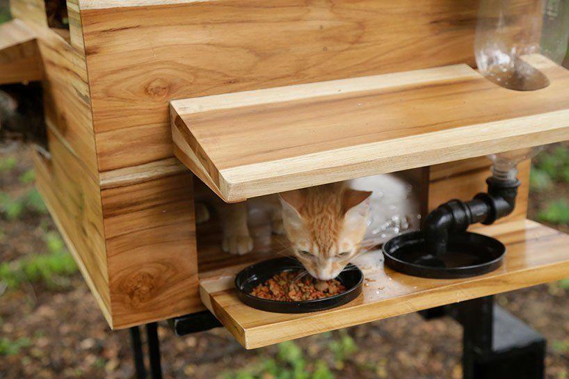 A casa para animais de rua possui um nicho em que ficam bandejas de água e comida