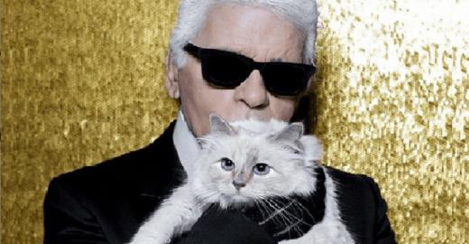 Gata de Lagerfeld pode ficar milionária após morte do estilista