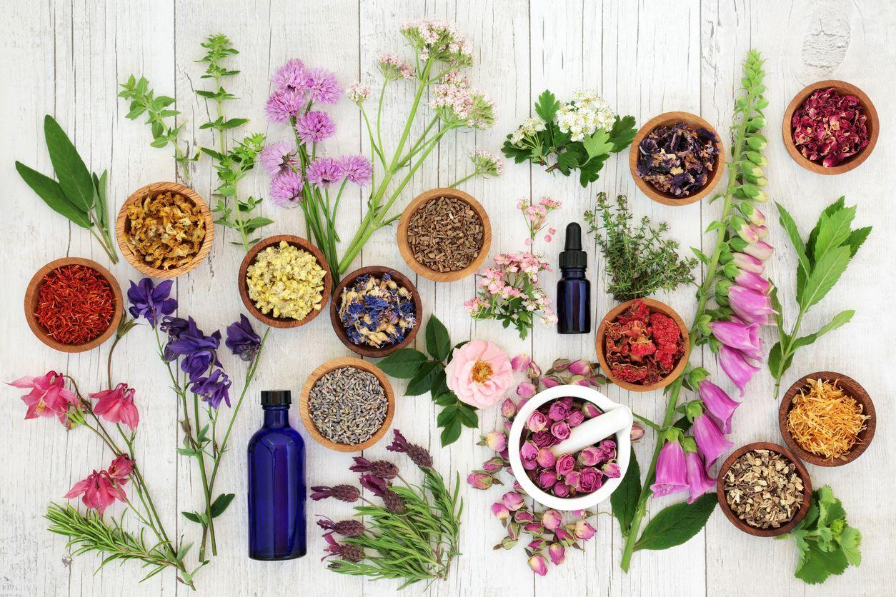 plantas e óleos na mesa