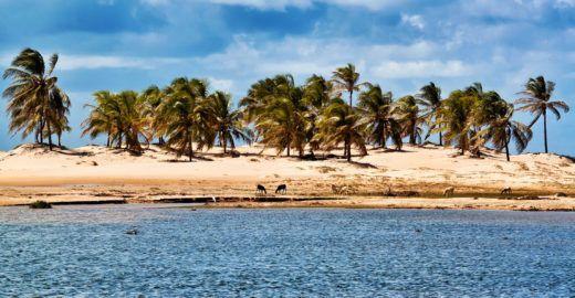10 passeios que você não pode deixar de fazer em Alagoas
