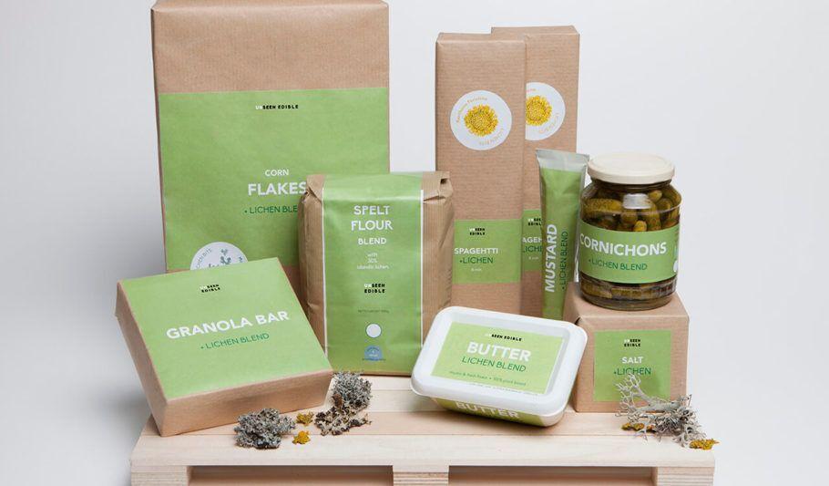 A combinação de algas e fungos também pode gerar alimentos de menor impacto ambiental