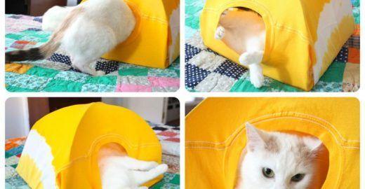 Casa para gato feita de camiseta e cabide fica pronta em minutos