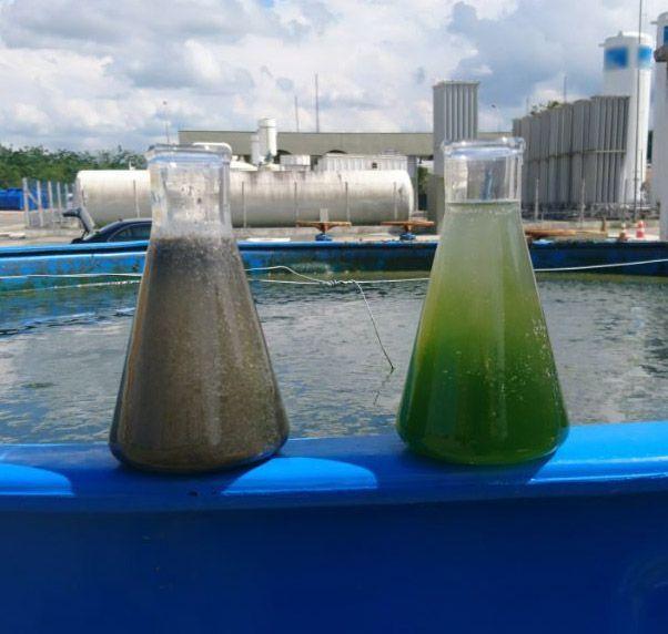 A startup também atua em estações de tratamento de água