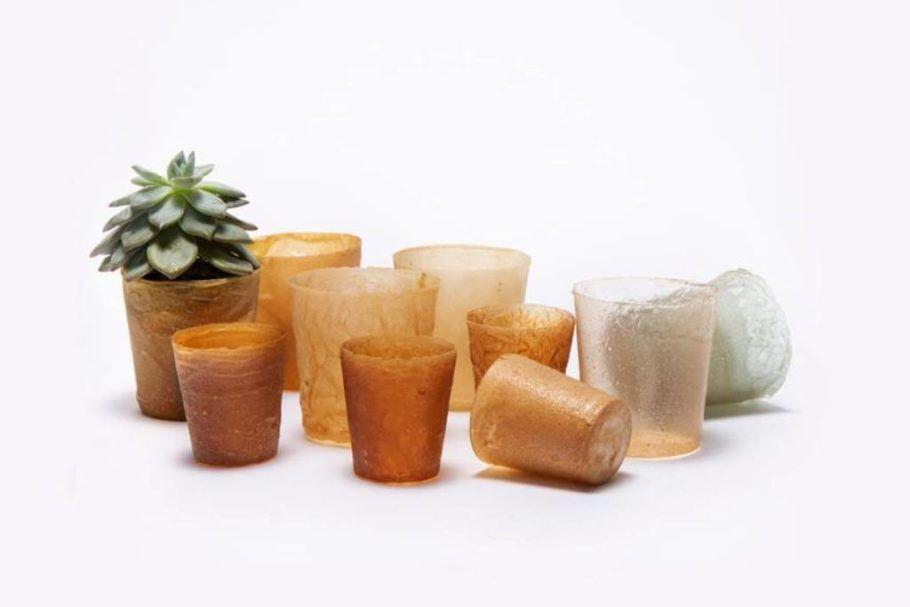O plástico de restos de frutos do mar é usado para fazer vasos biodegradáveis