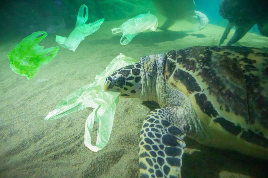 No ranking de lixo plástico, o Brasil só perde para EUA, China e Índia