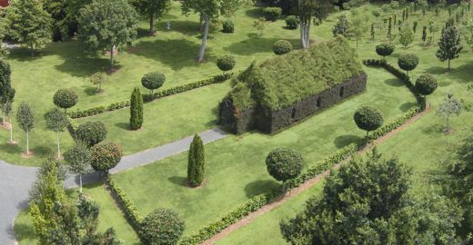 Neozelandês constrói igreja de árvores vivas