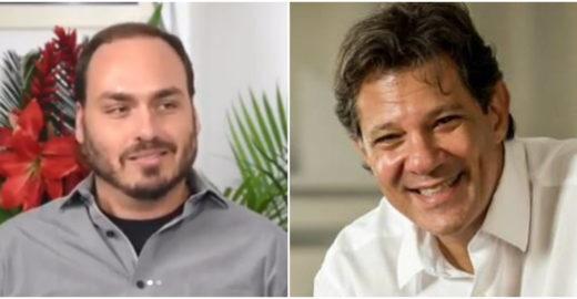 Haddad erra ao ser homofóbico com Carlos Bolsonaro em discussão