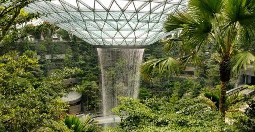 Melhor aeroporto do mundo ganha cachoeira e floresta; veja fotos