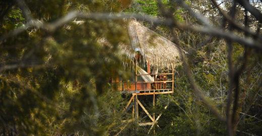 Juma Amazon Lodge investe em novos bangalôs em plena floresta
