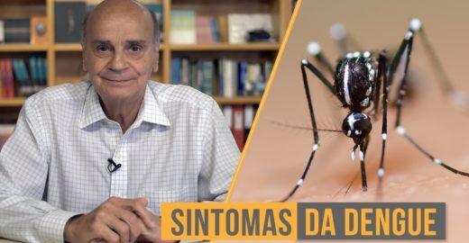 Dengue cresce 40% em 2 semanas. Aprenda a identificar rapidamente